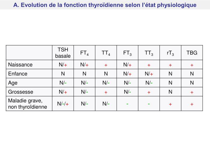 A. Evolution de la fonction thyroïdienne selon l'état physiologique