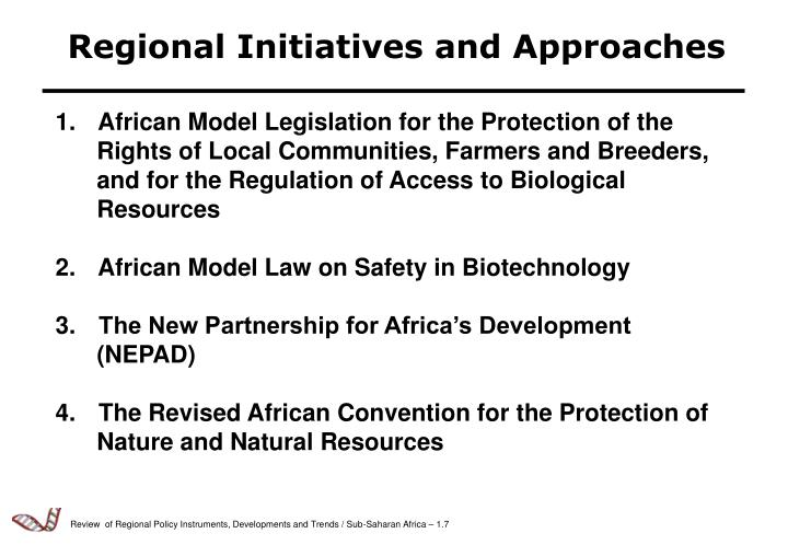 Regional Initiatives and Approaches
