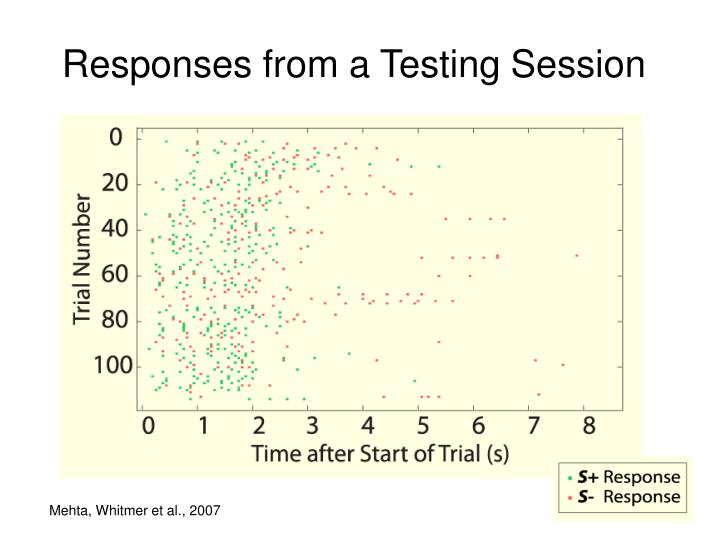 Responses from a Testing Session