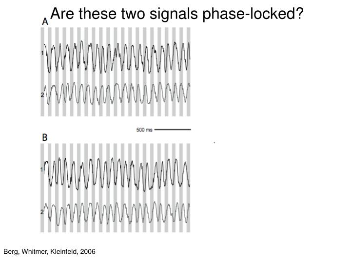 Are these two signals phase-locked?