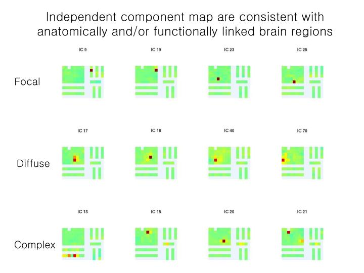 Independent component map are consistent with               anatomically and/or functionally linked brain regions