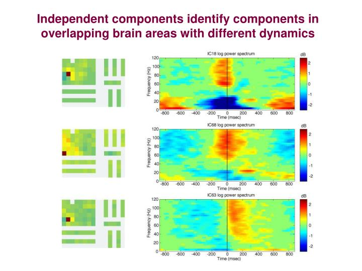 Independent components identify components in overlapping brain areas with different dynamics