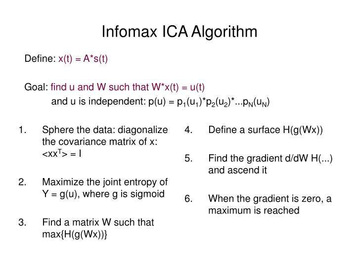 Infomax ICA Algorithm