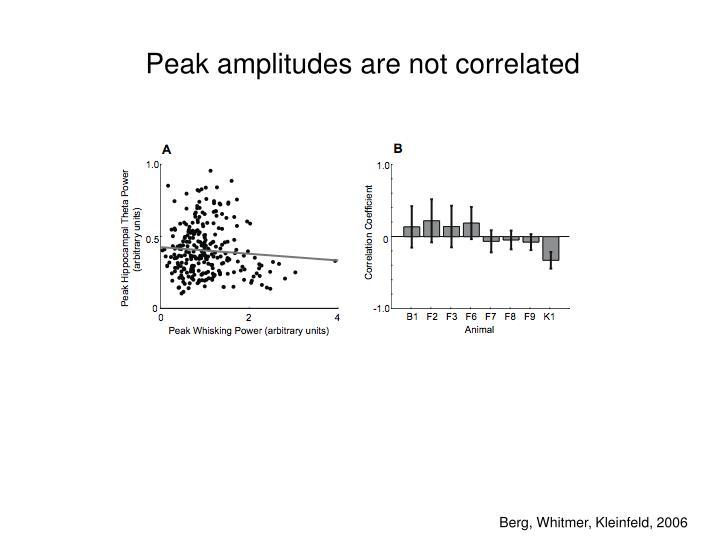 Peak amplitudes are not correlated