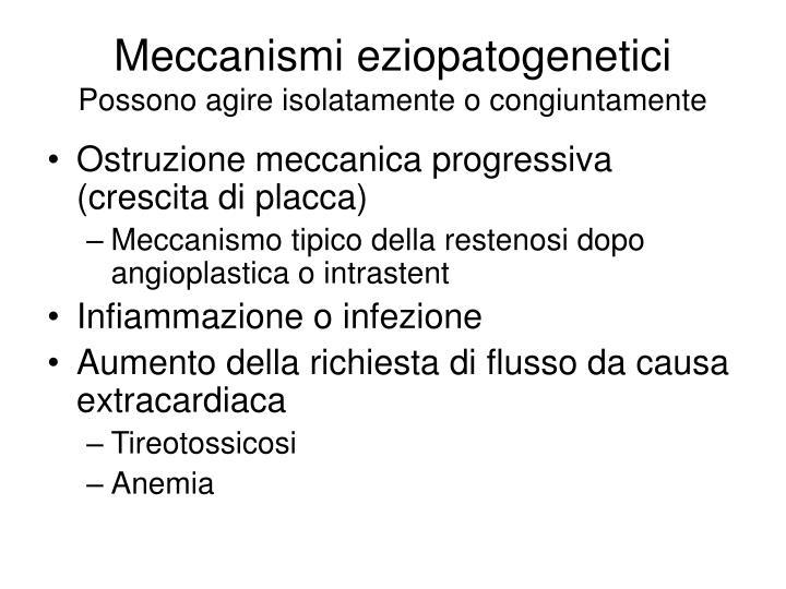 Meccanismi eziopatogenetici