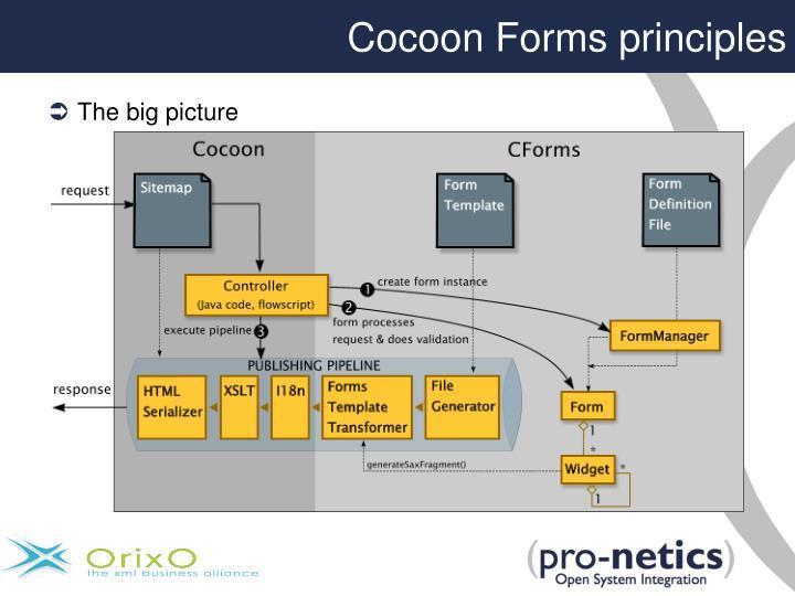 Cocoon Forms principles