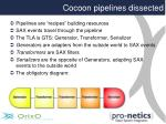 cocoon pipelines dissected