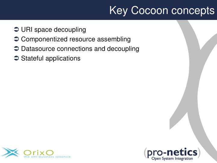 Key Cocoon concepts