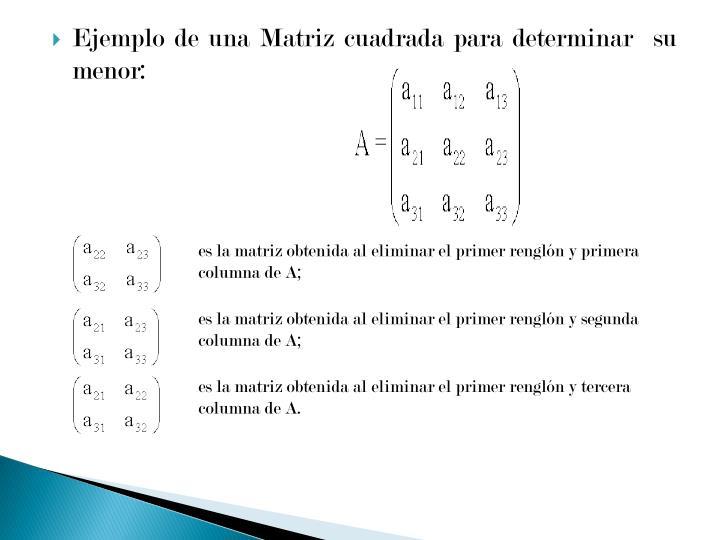 Ejemplo de una Matriz cuadrada para determinar  su menor: