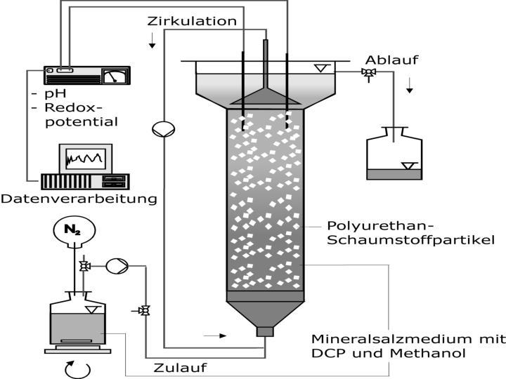 Kehrichtverbrennung / Wirbelschichtreaktor