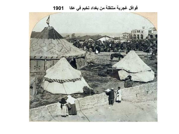 قوافل غجرية متنقلة من بغداد تخيم في عكا