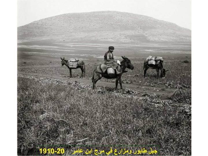جبل طابور ومزارع في مرج ابن عامر