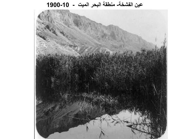 عين الفشخة- منطقة البحر الميت
