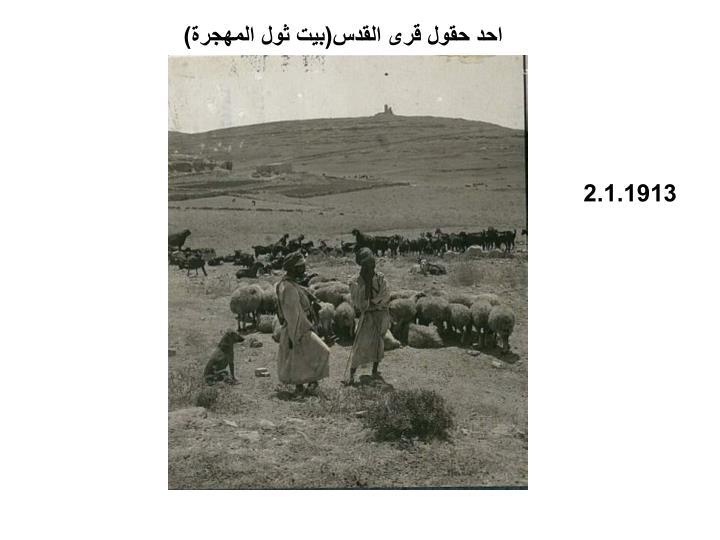 احد حقول قرى القدس(بيت ثول المهجرة)