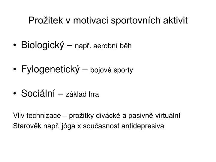 Prožitek v motivaci sportovních aktivit