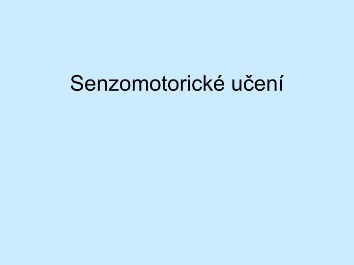 Senzomotorické učení