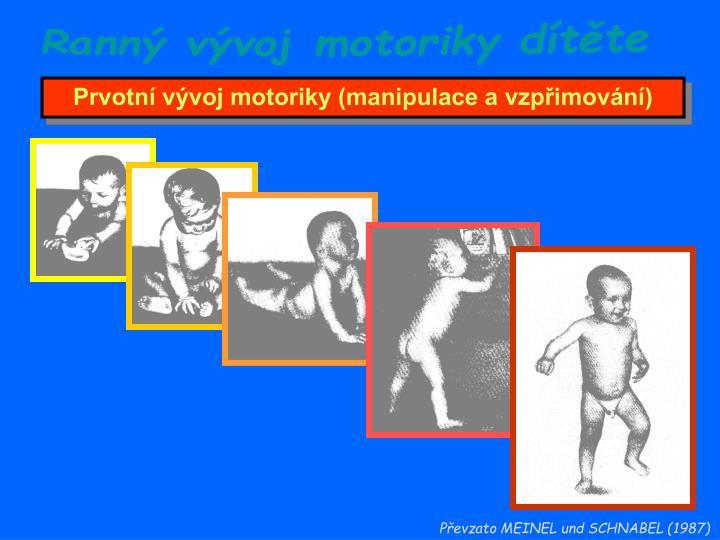Ranný vývoj motoriky dítěte