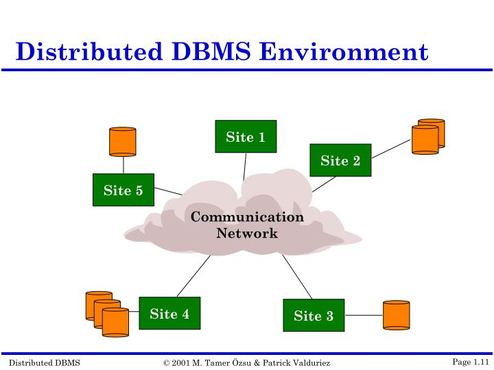 Distributed DBMS Environment