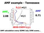 amf example tennessee
