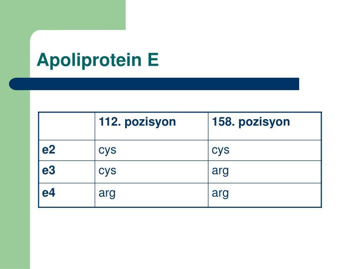 Apoliprotein E