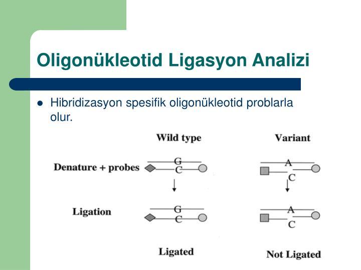 Oligonkleotid Ligasyon Analizi