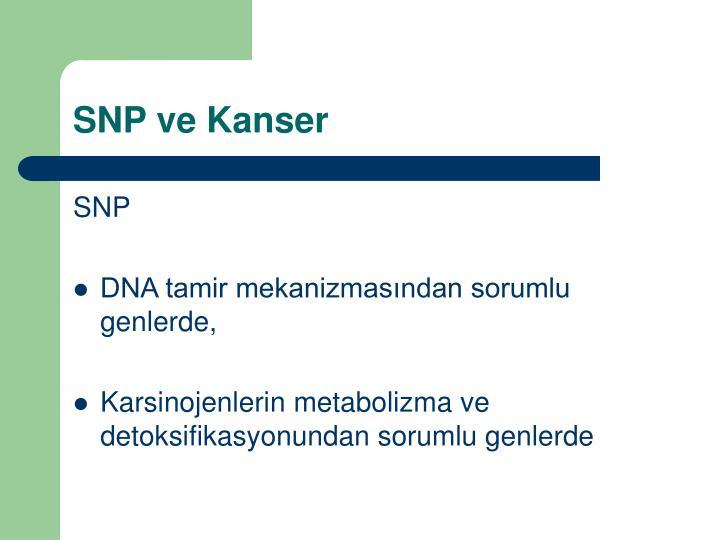 SNP ve Kanser