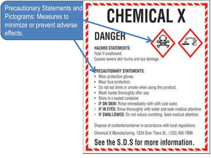 Precautionary Statements and Pictograms: Measures to minimize or prevent adverse effects.