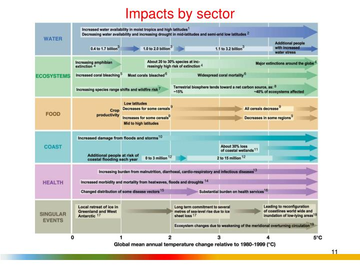 Impacts by sector