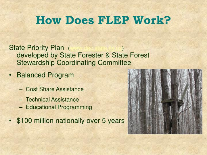 How Does FLEP Work?