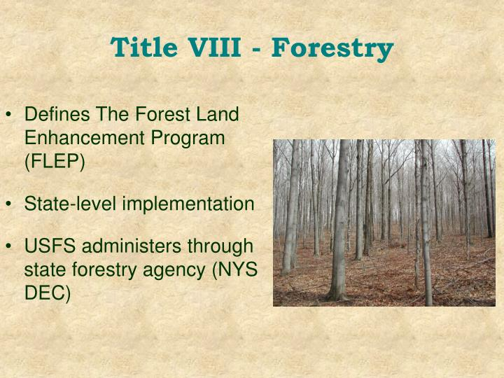 Title VIII - Forestry
