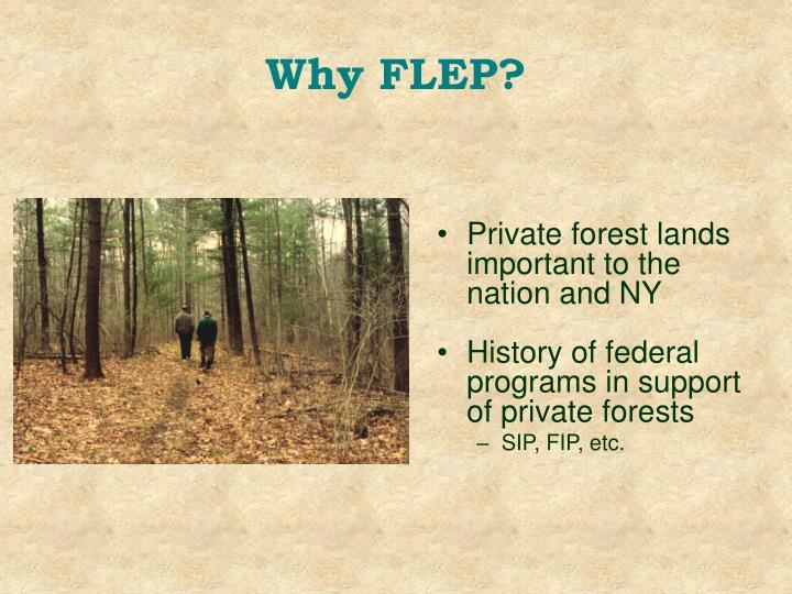 Why FLEP?