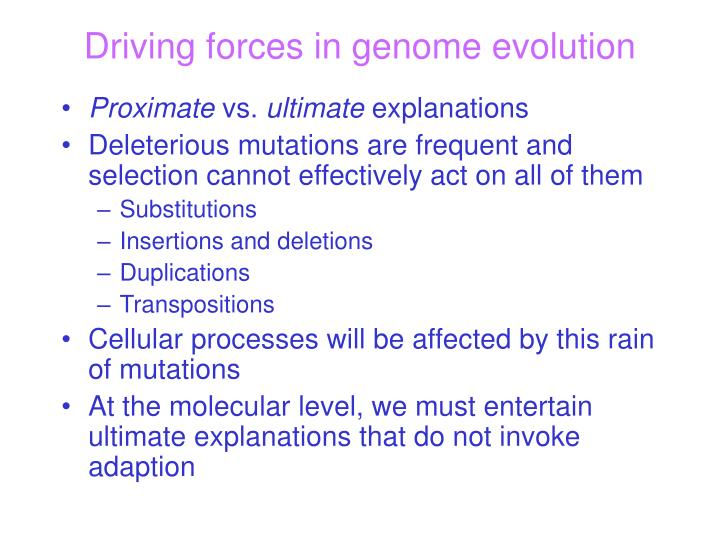Driving forces in genome evolution