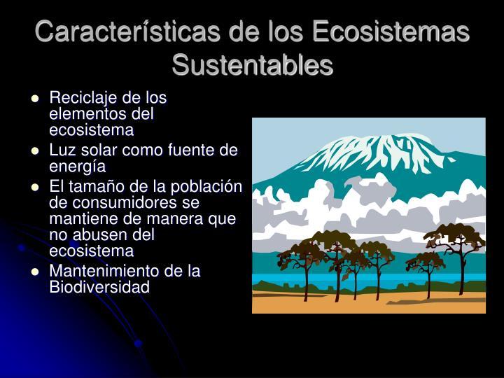 Reciclaje de los elementos del ecosistema