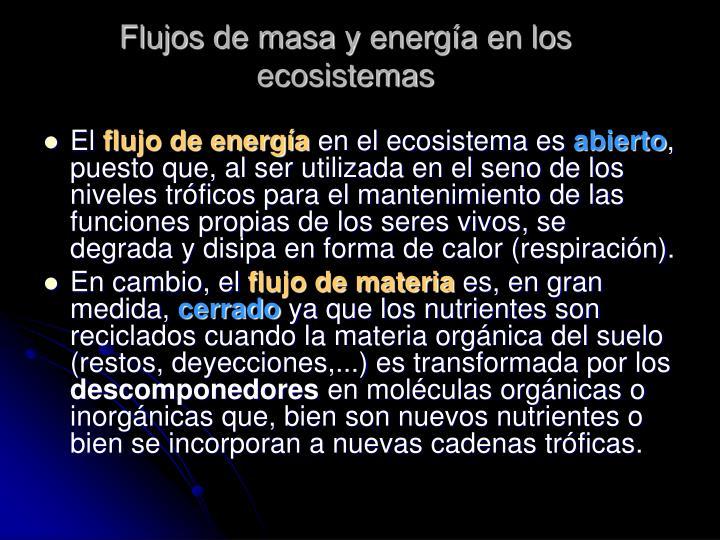 Flujos de masa y energía en los ecosistemas