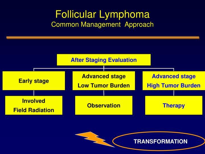 Follicular Lymphoma