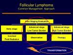 follicular lymphoma common management approach1
