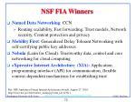 nsf fia winners