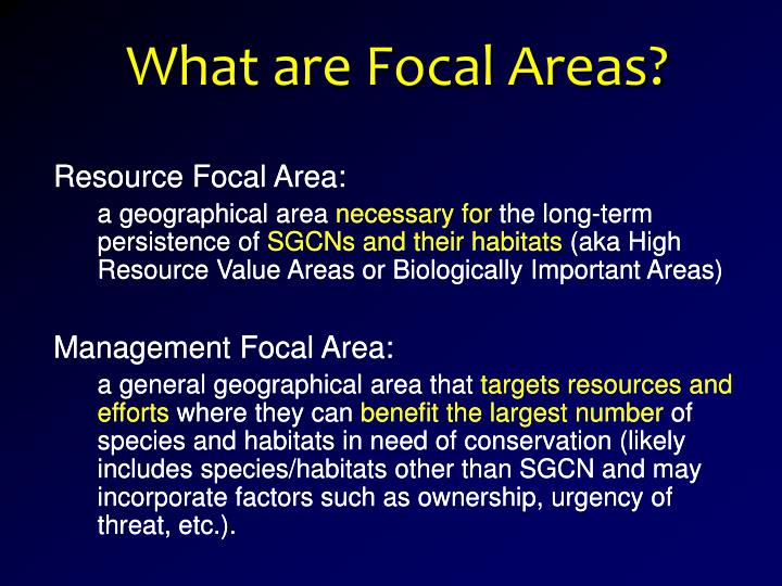 What are Focal Areas?