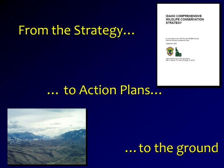 From the Strategy…