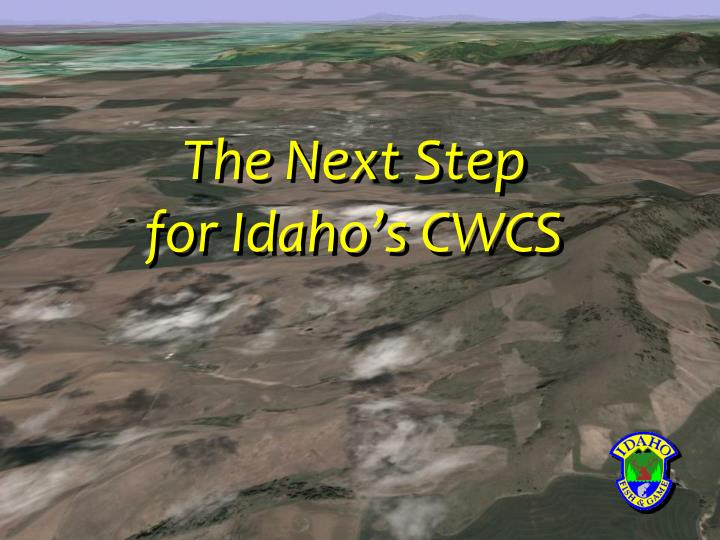The next step for idaho s cwcs