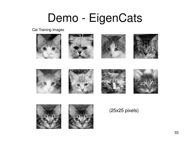 Demo - EigenCats