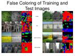 false coloring of training and test images1