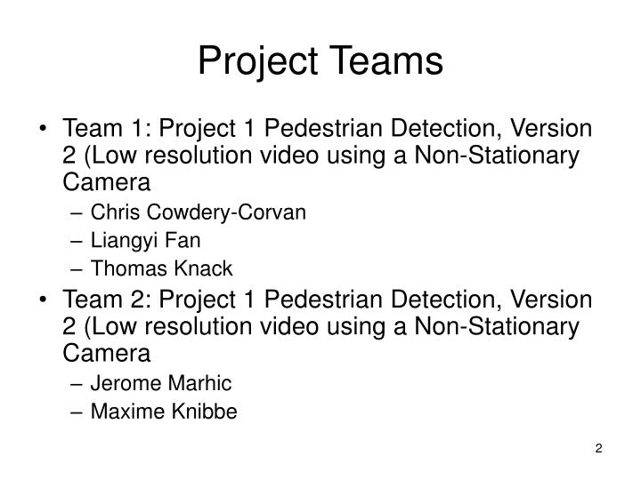 Project teams
