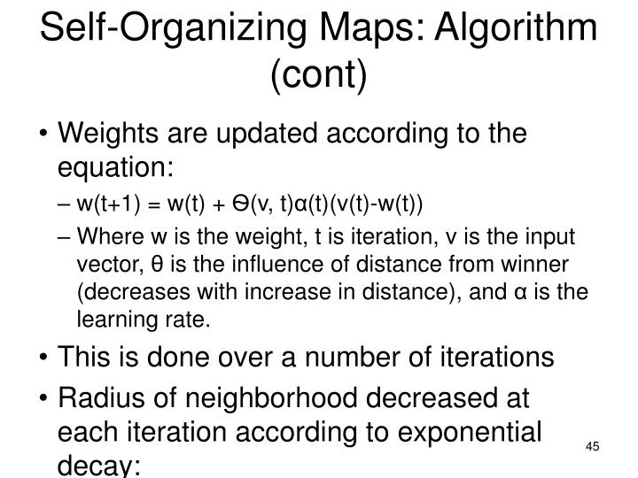 Self-Organizing Maps: Algorithm (cont)