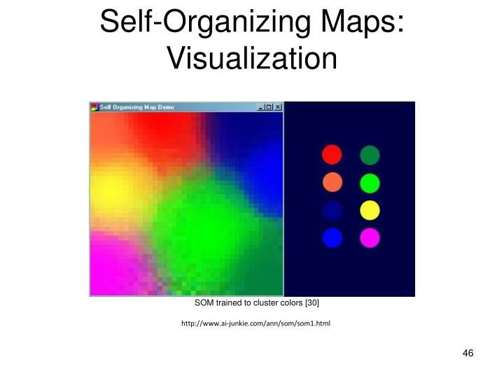 Self-Organizing Maps: Visualization