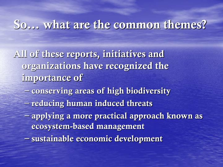 So… what are the common themes?