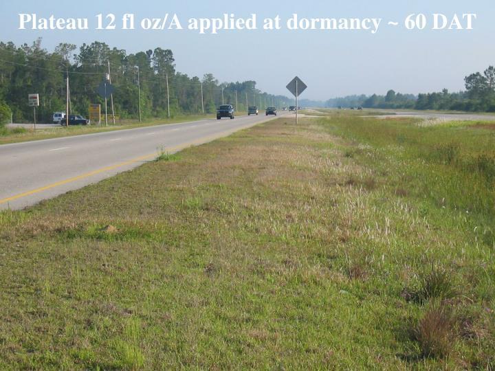 Plateau 12 fl oz/A applied at dormancy ~ 60 DAT