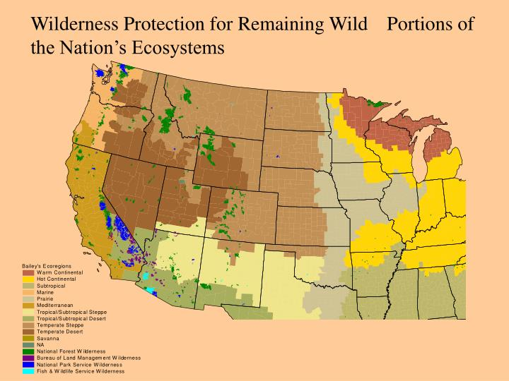 Wilderness Protection for Remaining Wild Portions of the Nation's Ecosystems