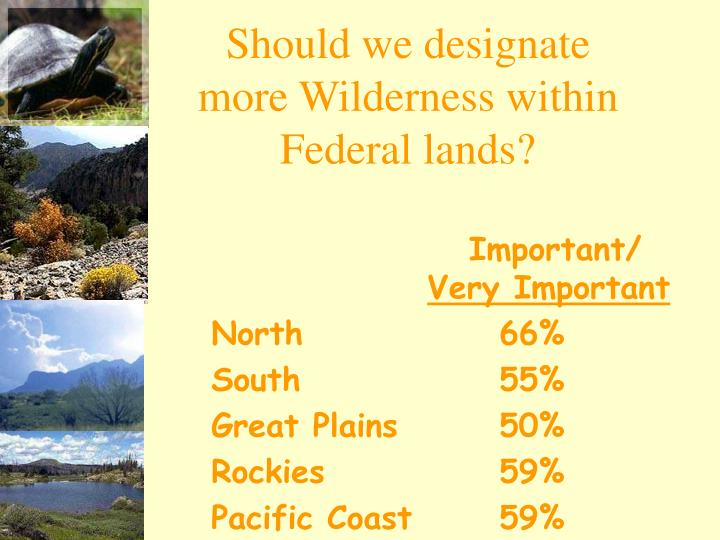 Should we designate more Wilderness within Federal lands?