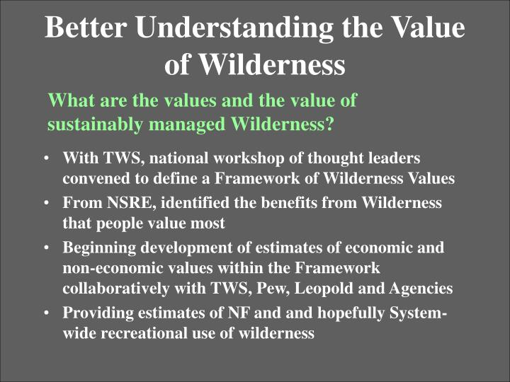 Better Understanding the Value of Wilderness